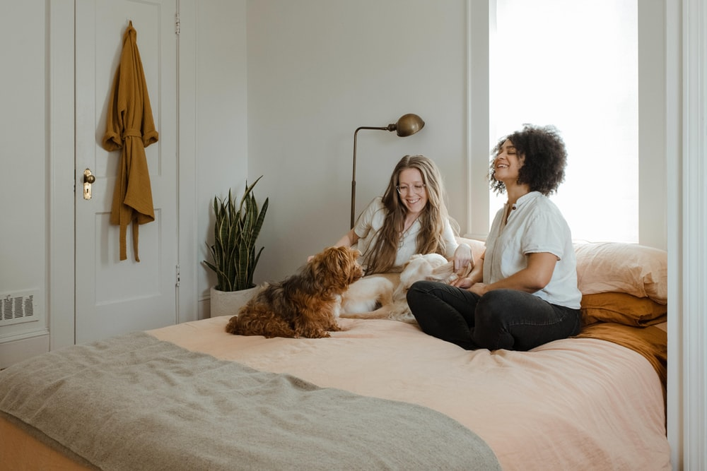Two women and a dog sit on a bed talking